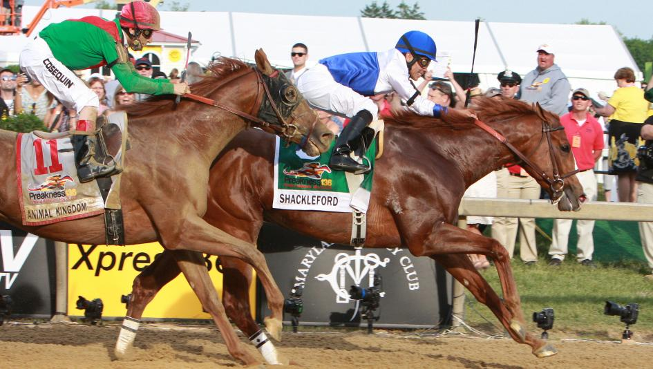 Using History to Handicap the 2021 Preakness Stakes