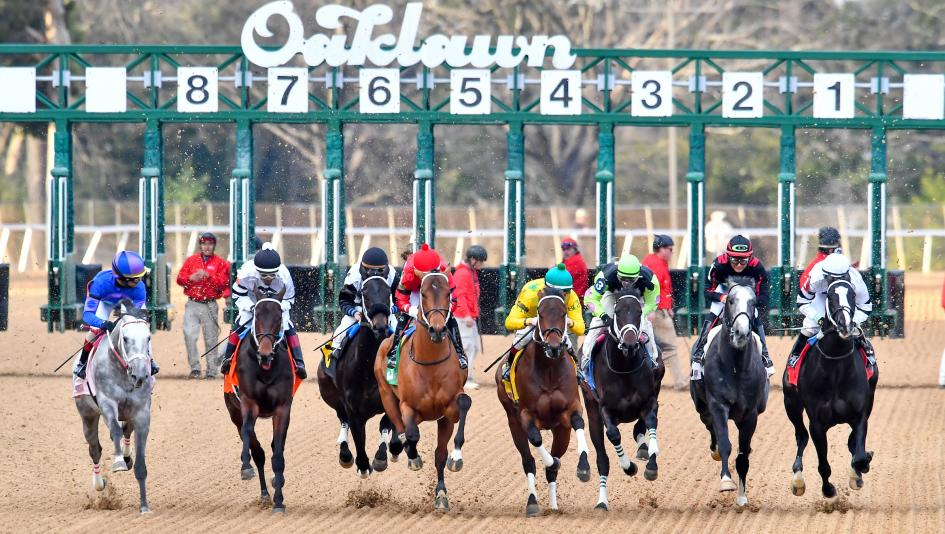 2019 Southwest Stakes Cheat Sheet