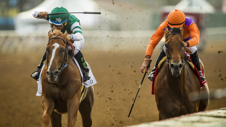 Making Money Betting Beholder in the Zenyatta Stakes