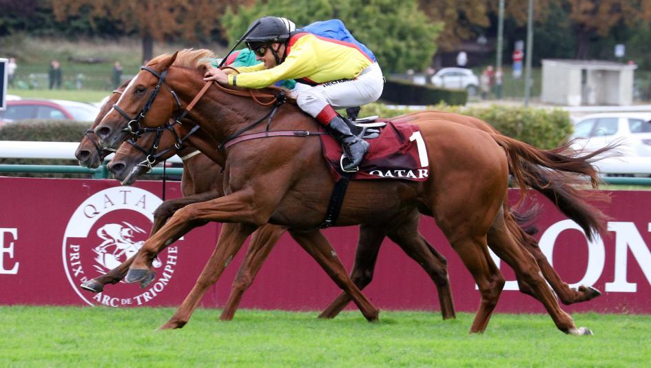 Torquator Tasso Upsets Prix de l'Arc de Triomphe to Earn Breeders' Cup Berth