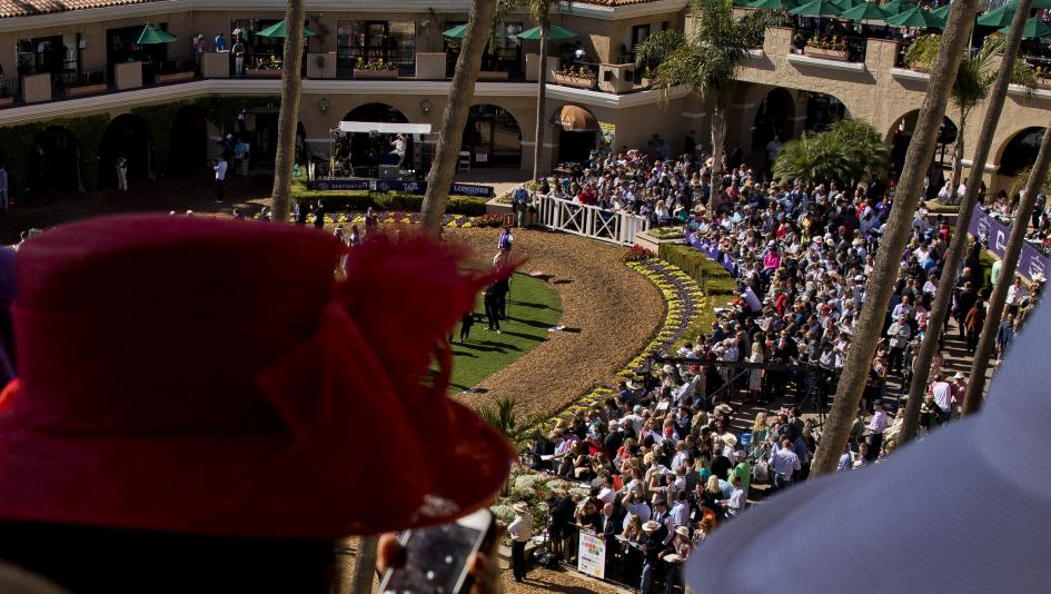 The Main Track Breeders Cup Poised To Build On Del Mar