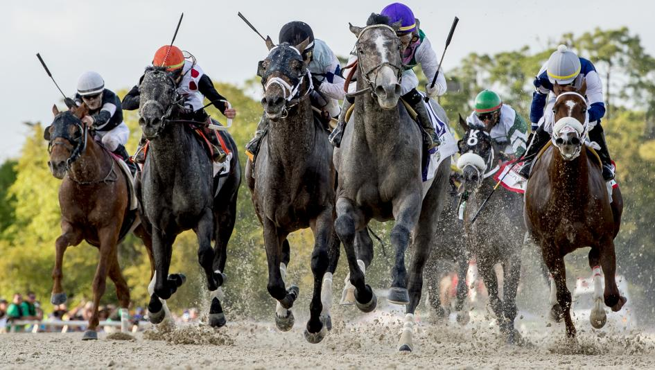 Best Bets: Focus on Florida, Tampa Bay Derby Longshot
