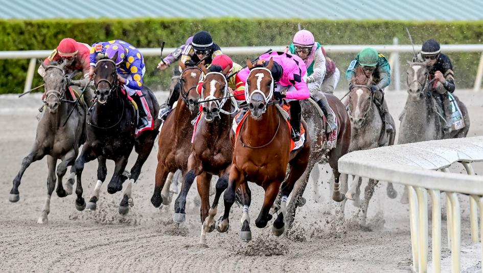 gulfstream horse racing results