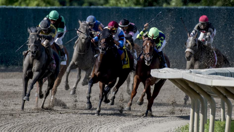 Tips and Trends for Betting Monmouth Park for the 2021 Season