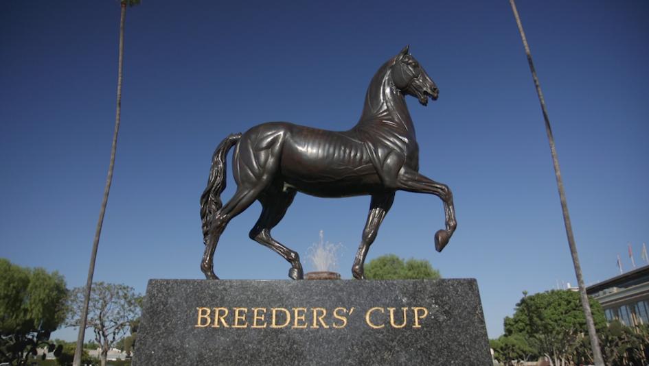 InstaBram: Breeders' Cup Miracle