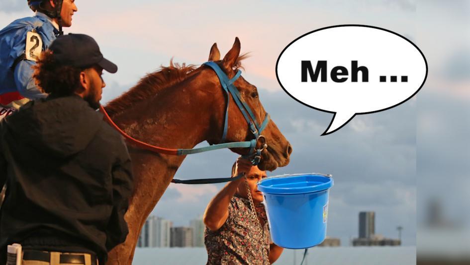 InstaBram: Bad Derby Logic