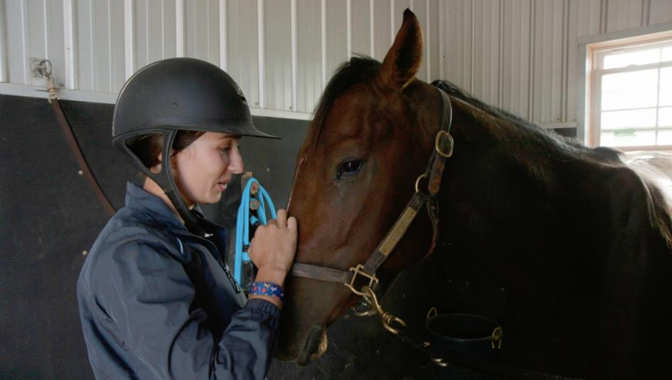 New Vocations: Helping Racehorses Find New Purpose