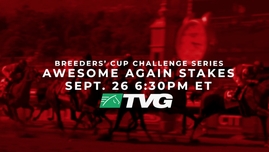 Watch the Awesome Again Stakes Saturday!