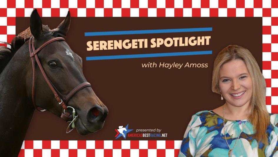 Serengeti Spotlight: 'Test' Prep at Saratoga