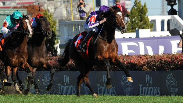 Using History To Handicap The 2018 Breeders Cup Turf