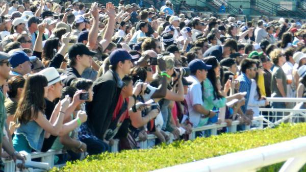 Santa Anita Derby Diaries Chrome Shines America S Best