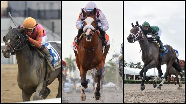 SLIDESHOW: Meet the 2020 Belmont Stakes Contenders