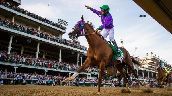 California Chrome, A Horse Who Brought Dreams to Life
