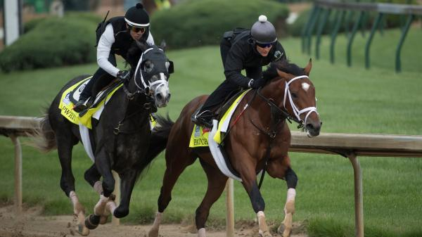 SLIDESHOW: Contenders for the 143rd Kentucky Derby