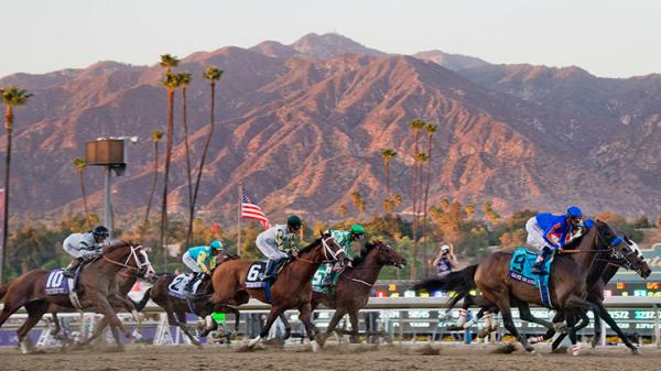 Breeders' Cup or Bust for 'Horseplayers' | America's Best Racing