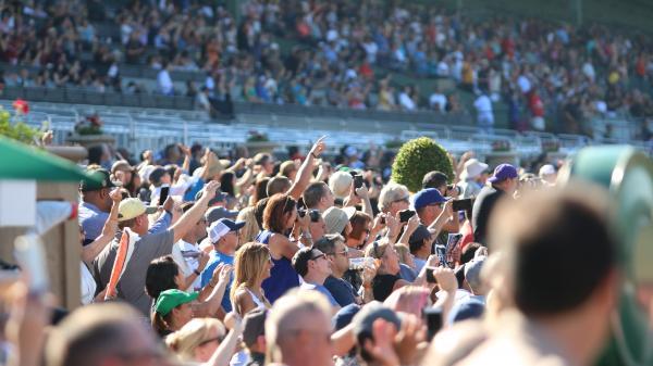 Can Favorite Justify Hype In Santa Anita Derby America