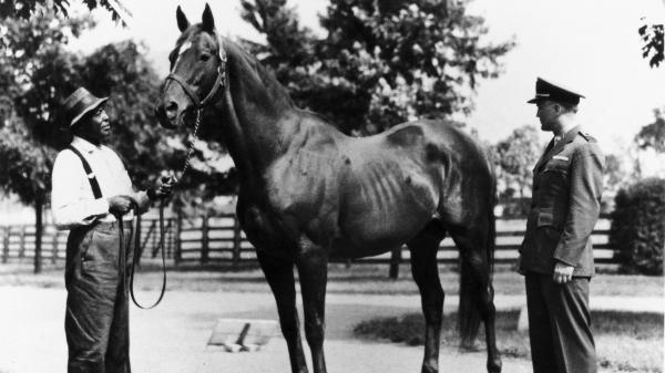 Top 10 Racehorses Of The 20th Century America S Best Racing