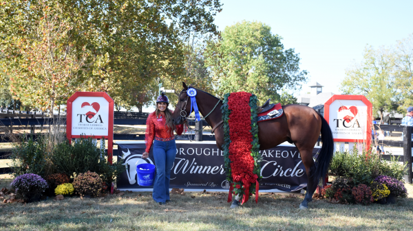 Ten Lessons Learned From 2019 Thoroughbred Makeover