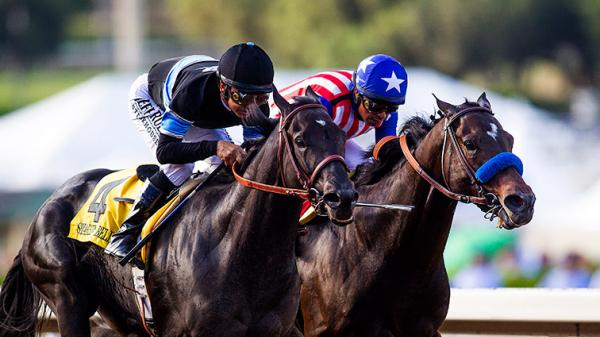 America S Best Thoroughbreds For Sept 29 America S Best Racing