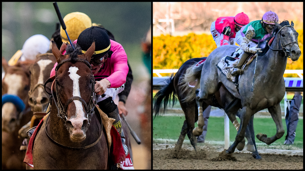 2019 Belmont Stakes Cheat Sheet America S Best Racing