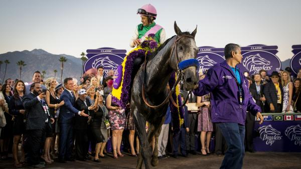 Arrogate S Breeders Cup Classic Win Draws Comparisons To