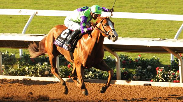 Trends and Tips for Picking a Breeders' Cup Juvenile Winner
