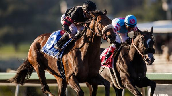 Shaman Ghost Gets Up Late To Win Big Cap America S Best