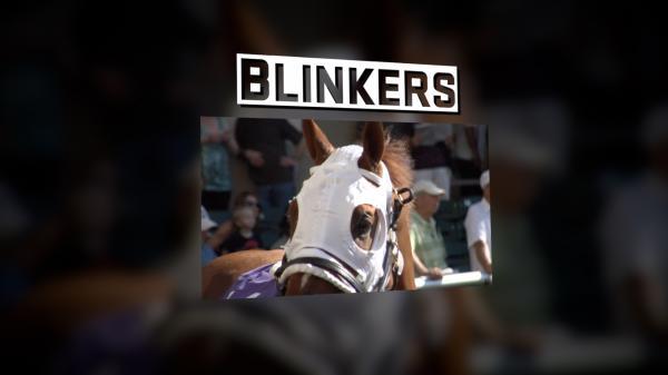 #TheAction: Blinkers