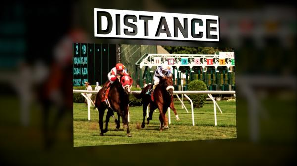 #TheAction: The Distance