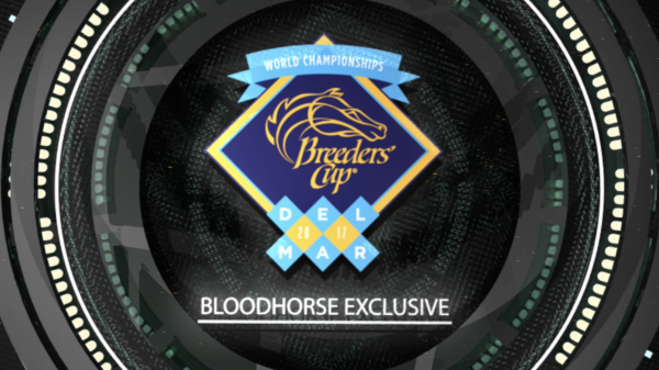 Aidan O'Brien Talks Breeders' Cup