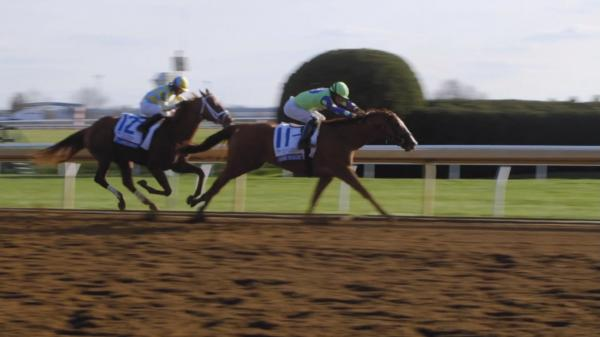 Don't Miss the Blue Grass Stakes this Saturday