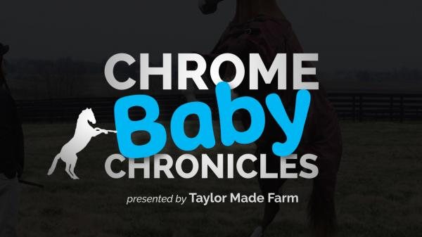 Chrome Baby Chronicles: Episode 1