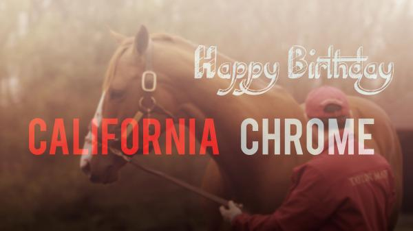 Happy Birthday California Chrome