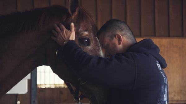 When Horses Heal: Man O' War Project at Columbia University Irving Medical Center