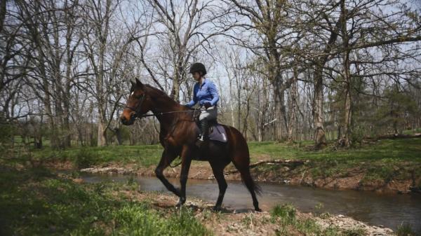 Retraining a Derby Horse: Rosie Napravnik and My Man Sam