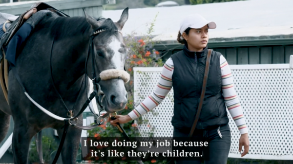 I Am Horse Racing: Marisol Donis