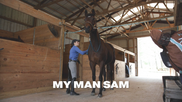 Riding with Rosie: Enjoying Journey with OTTBs, My Man Sam