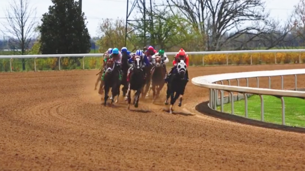 Tune In, Cash In: Horse Racing Is Still Running Strong