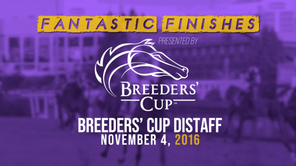Breeders' Cup Fantastic Finishes: 2016 Distaff