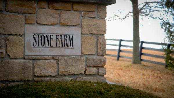 BlackJack Visits Horse Country: Birthplace of Greatness at Stone Farm