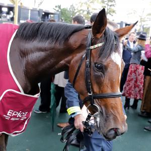 Enable (GB)