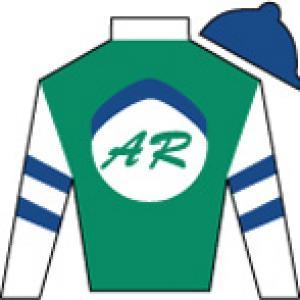 Alto Racing, LLC