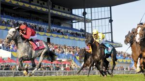 Ten Fun Facts About the Woodbine Mile