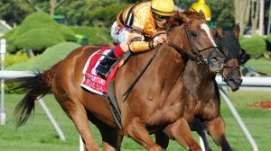 Fast Facts about the Fourstardave Handicap