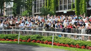 Five Questions to be Answered in 2019 Jockey Club Gold Cup