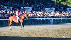 Best Bets of the Weekend: Summer Sizzles at Saratoga