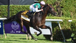 What to Know About the Sword Dancer Stakes