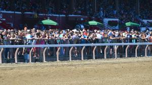 Best Bets of the Weekend: Nice Price at the Spa, Arlington Longshot