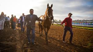By the Numbers: Pacific Classic Stakes