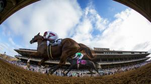Can Collected Spring Mild Upset in Breeders' Cup Classic?